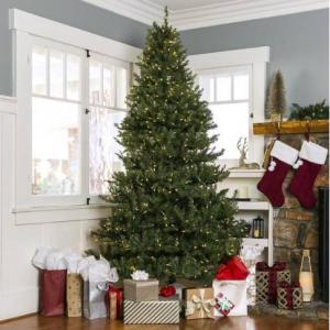 6ft Pre-Lit Hinged Douglas Artificial Christmas Tree w/ 450 Lights, Stand